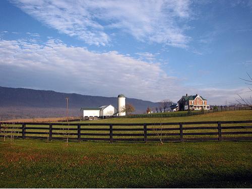 farm, broadcast, Grammarly