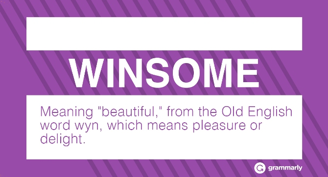 WINSOME Meaning