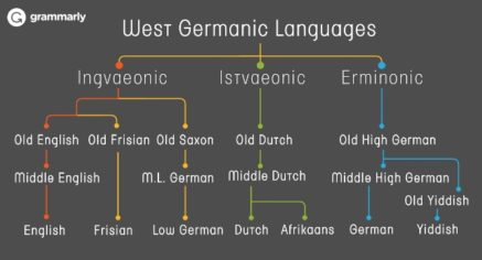 5 Books That Explain the Evolution of the English Language