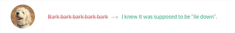 Doggie grammar correction sample