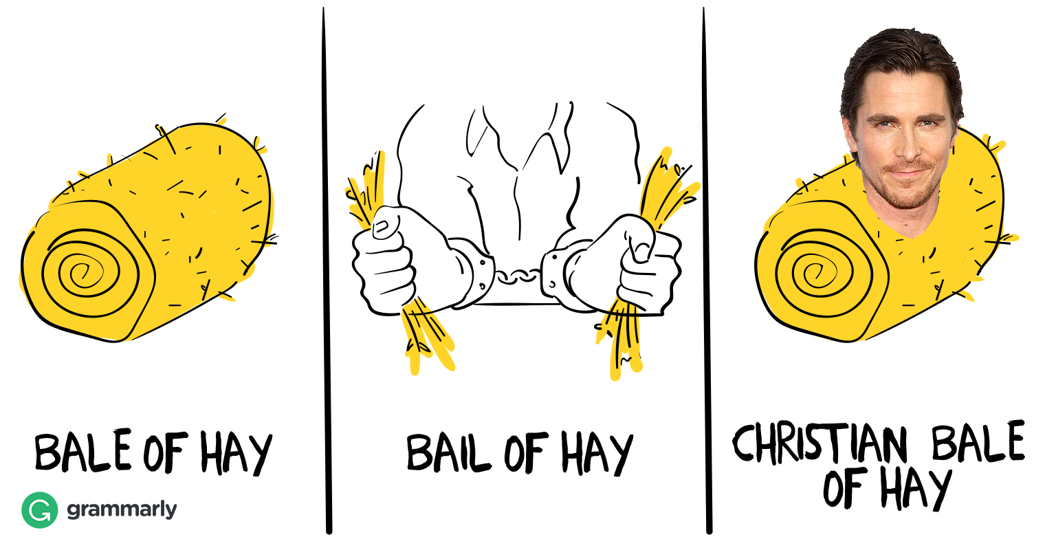 Bale of Hay or Bail of Hay Image