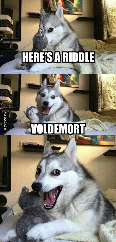 Voldemort Riddle Husky Pun Meme.