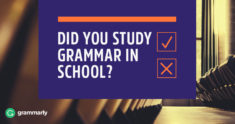 Did You Study Grammar In School?