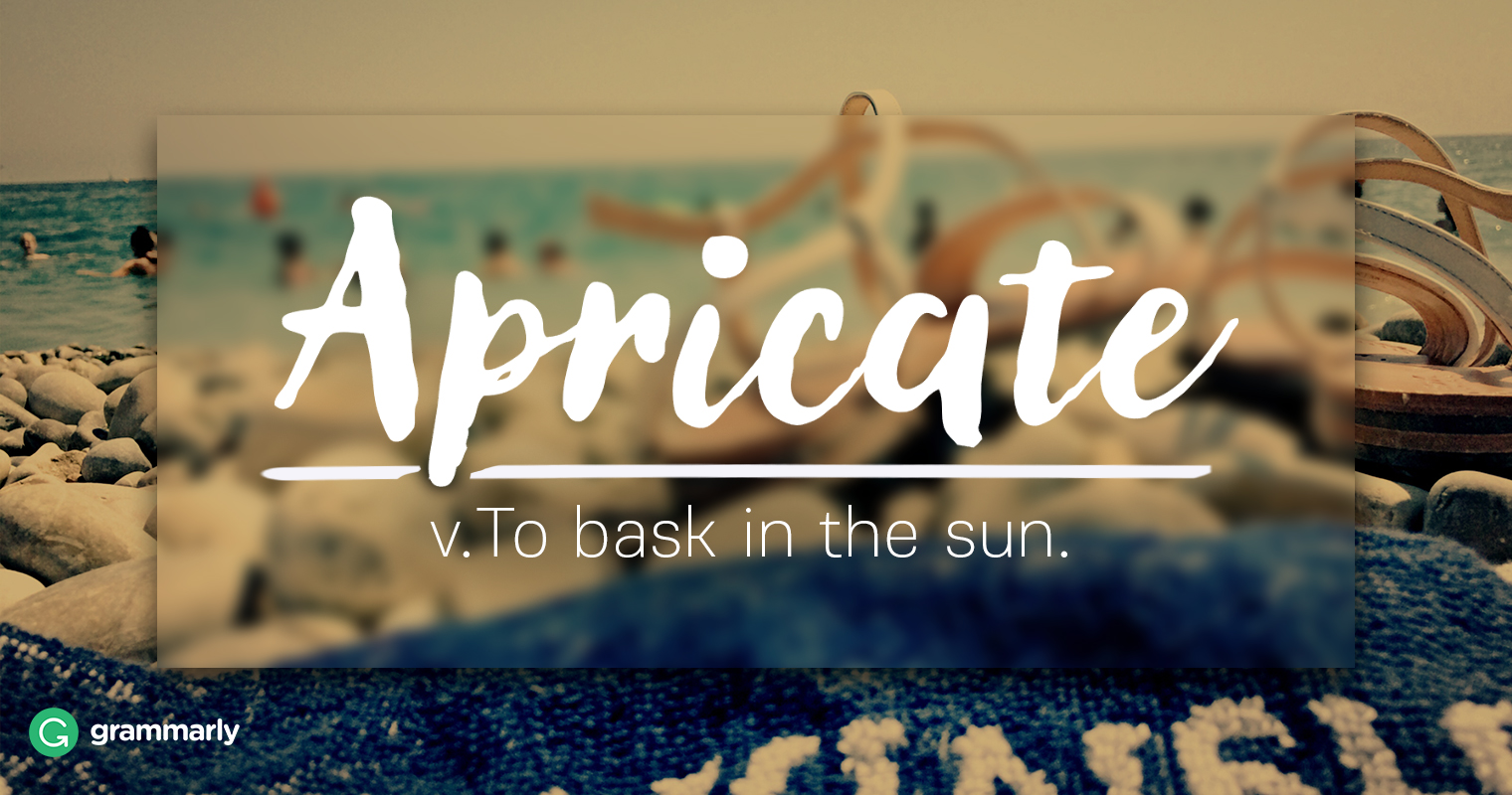 Apricate Explanation