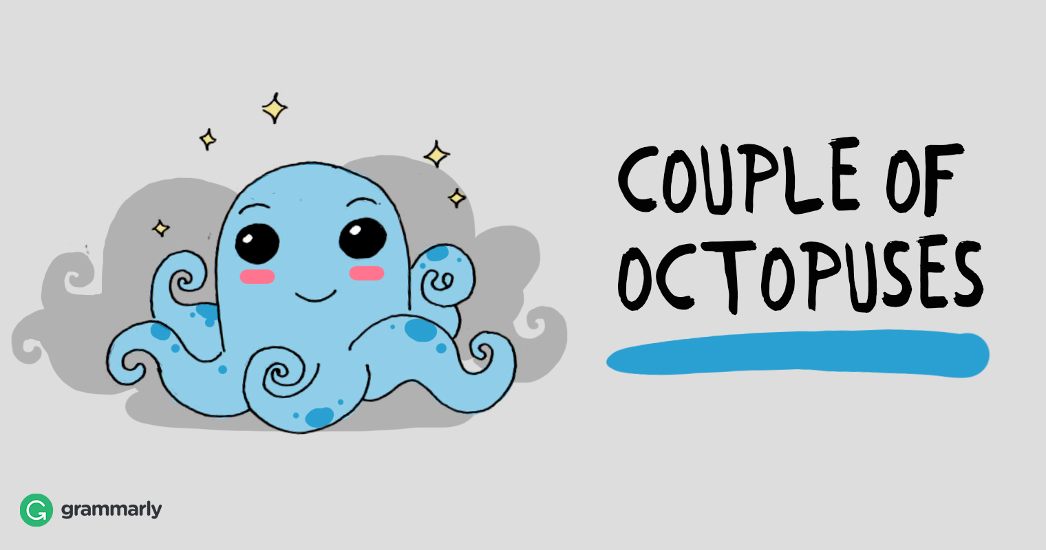 Collective of octopuses is a couple.