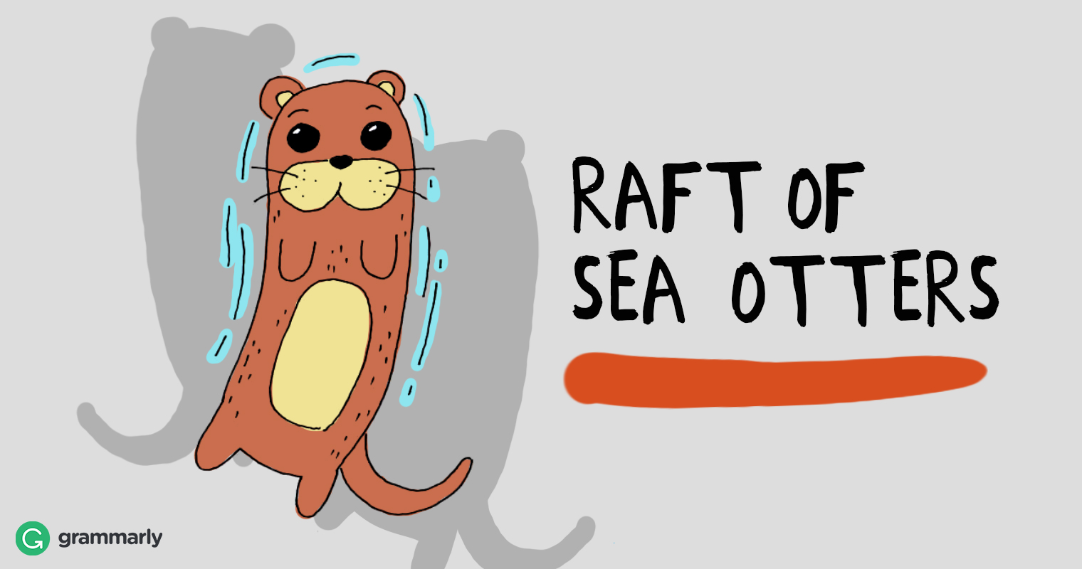 Collective of sea otters is a raft.