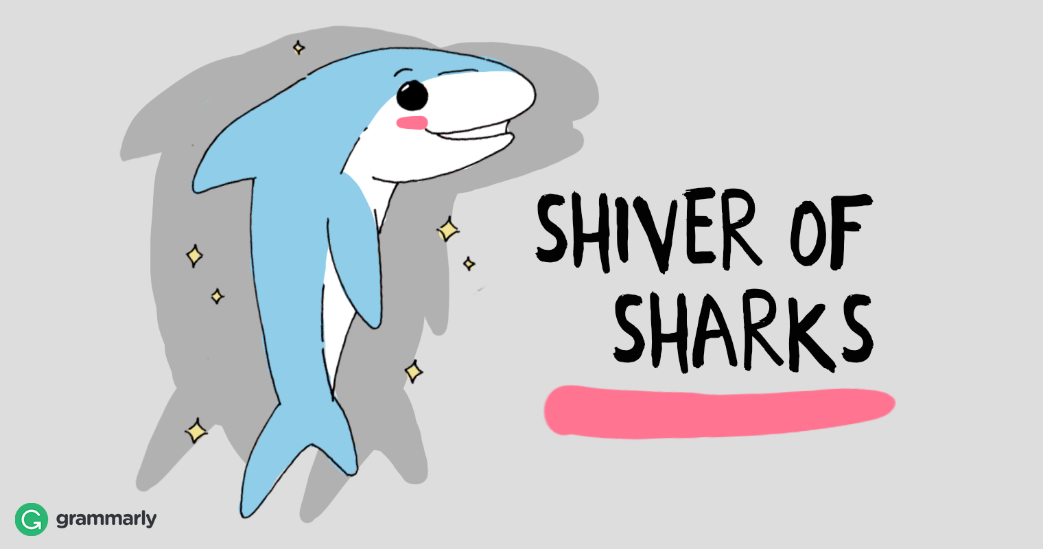 Collective of sharks is a shiver.