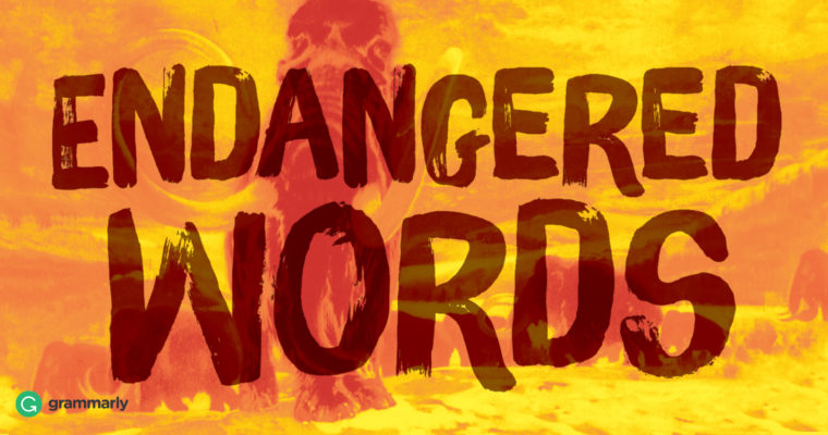 6 Endangered Words