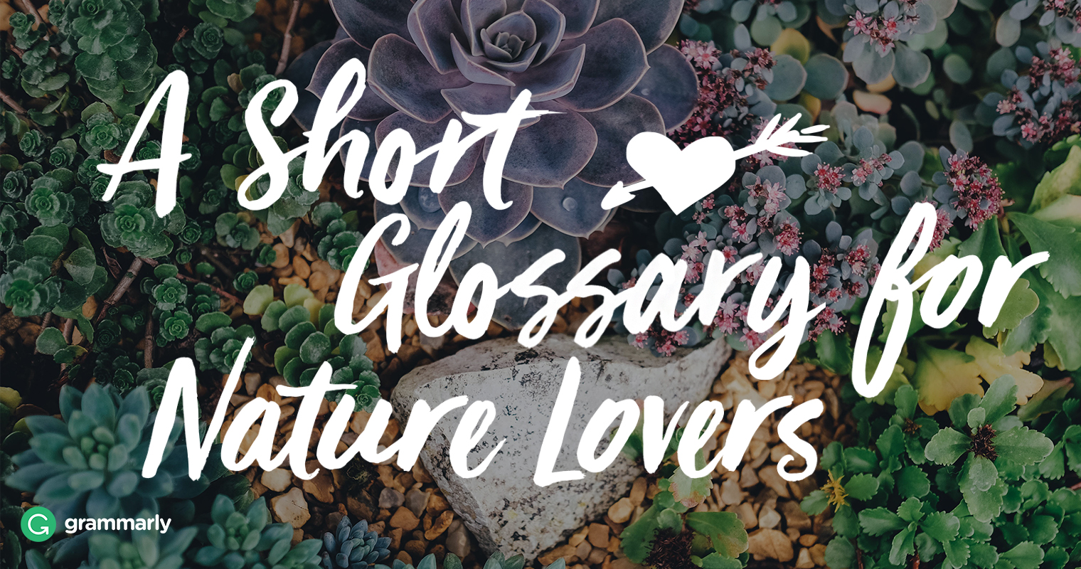 7 words for nature lovers grammarly blog izmirmasajfo