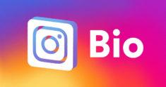 6 Inspiring Instagram Bio Ideas
